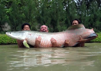 This is one big fish!